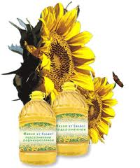 Sunflower oil bottled