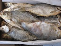 Buy Processed fish