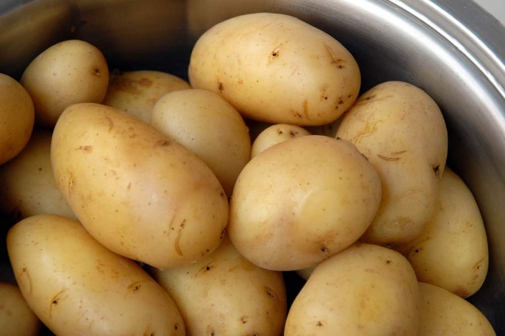 Buy Fresh Potato from Pakistan