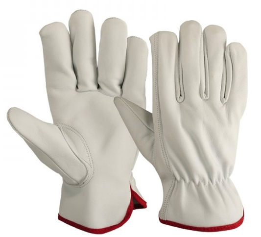Buy Driver Gloves