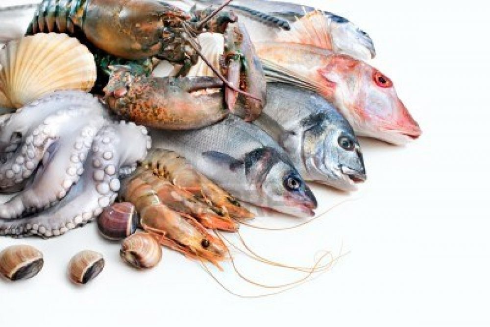 Buy All Kinds Of Fresh Seafoods