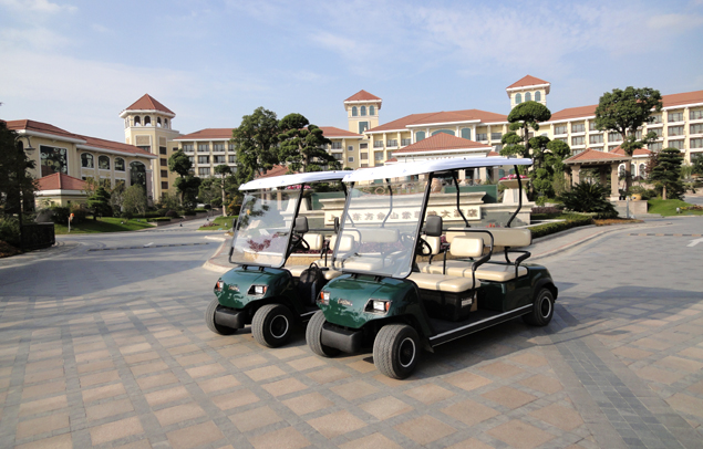 Buy Golf Cart Electronic Battery Operated Sight Seeing Vehicle Car