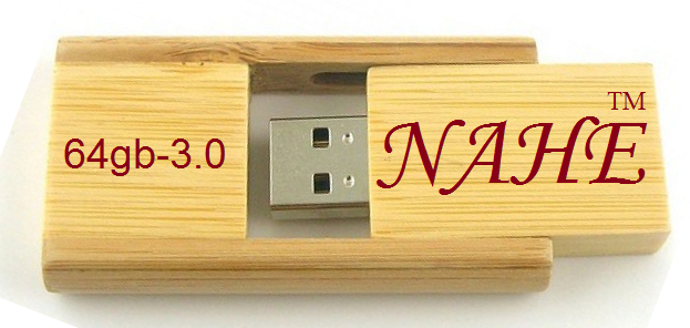 Buy Wooden Rectangular USB Flash Drive