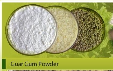 Buy Guar Gum and Guar Meal.