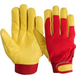 Buy Leather Gloves