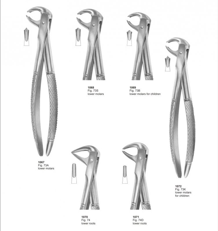 Buy Extracting Forceps Dental instruments Pak Surgical Pakistan