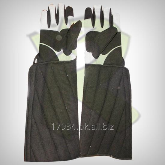 Buy Fencing Coach Amara Gloves
