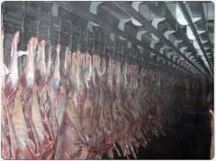 Chilled Mutton