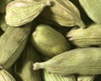 Common Name Cardamom is a perennial plant; the