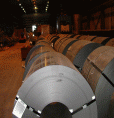 Hot Rolled Coils/Sheets