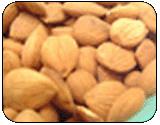 Almond kernels (badam)