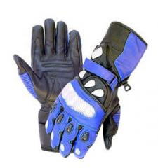 Motorbike Gloves RT-3001