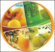 Food chemical