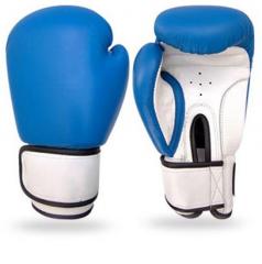 Boxing Gloves FS-1240