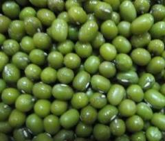 Green-mung Beans