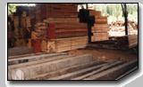Timber, Indonesian Balau Sawn