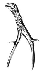 Bone rongeuros