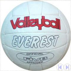 Match Volleyballs