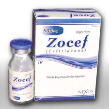 Zocef - ceftriaxone injection