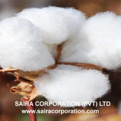 Afzal (Staple Raw Cotton)