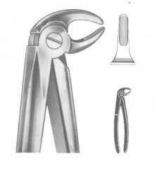 Extracting Forceps English pattern Art No: