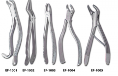 Dental Forceps