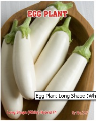 Egg Plant Long Shape (White) Hybrid F1