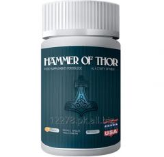 Hammer of thor price/results 03214846250