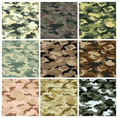Bologna Camouflage (wholesale)