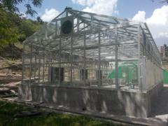 Green House (HIGH TECH)