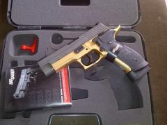 Gun sigsauer p226
