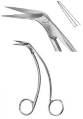 Oral Scissor