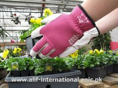 Alif Garden Gloves  78602