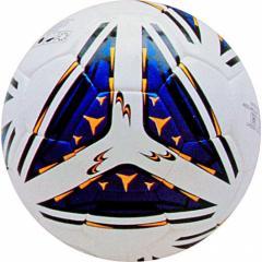 Мяч профессиональный 2-206