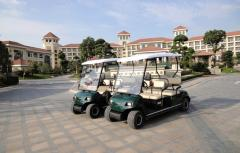 Golf Cart Electronic Battery Operated Sight Seeing Vehicle Car
