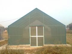Green House (Lath House) Using Green shade Net