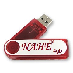 4gb PP Swivel USB Flash Drive