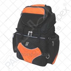 Sissy Bar Bag Cordura Textile Motorcycle