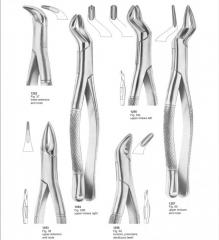 Dental Extracting Forceps Pak Surgical Pak surgical