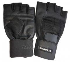 Weight Lifting Gloves - Fitness Gloves