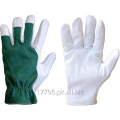Goatskin Leather Gloves /