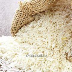 Rice Basmati & Non-Basmati