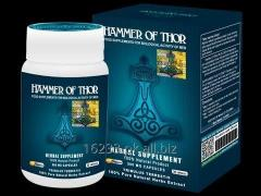 Buy Hammer of Thor Book Online at Low Prices in Pakistan