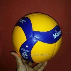 Mikasa Volleyball V200W