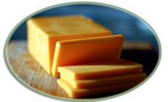 Fresh Pure Cheese