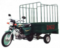 Load trolly 100CC 3-wheeler