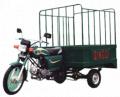 Load trolly 100CC 3-wheeler