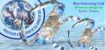 BLUE SWIMMING CRAB (Portunus pelagicus)