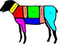 Halal Frozen Sheep Meat
