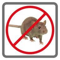 Order Rats control